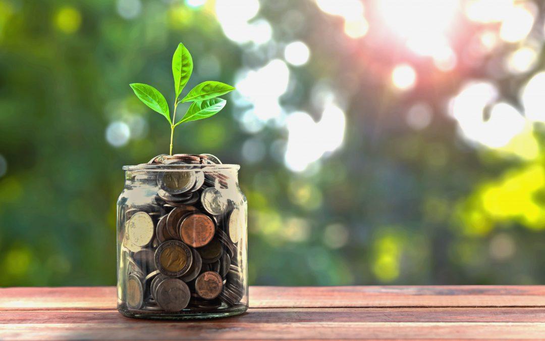 Reddito di Cittadinanza. Quali Benefici per le Imprese?